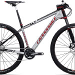 Flash 29er Carbon